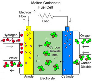 drawing of molten carbonate fuel cell