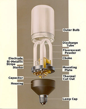 Lighting a revolution compact fluorescent lamp drawing diagram of philips sl18 compact fluorescent lamp aloadofball Image collections