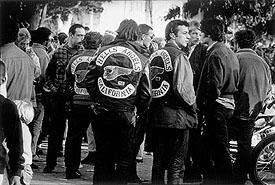 Lisa Law: The Counterculture