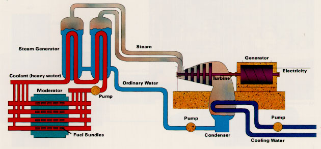 Diagram of a Nuclear Plant