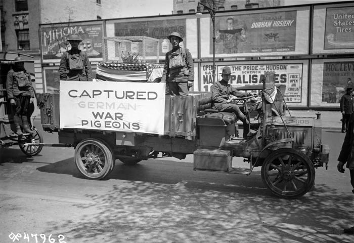 "A black and white photograph of soldiers driving a truck with a box of pigeons in the back. A banner on the side reads ""Captured German War Pigeons."""