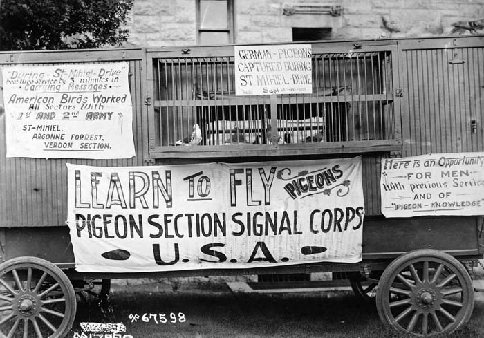 "A black and white image of pigeons in an animal moving car. Signs n the die read ""Pigeon Section Signal Corps USA"""