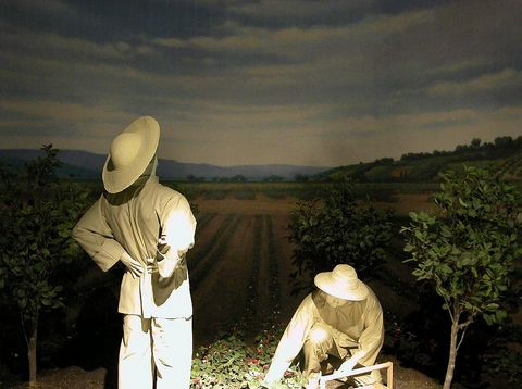 Plaster  of laborers stand in an orchard.