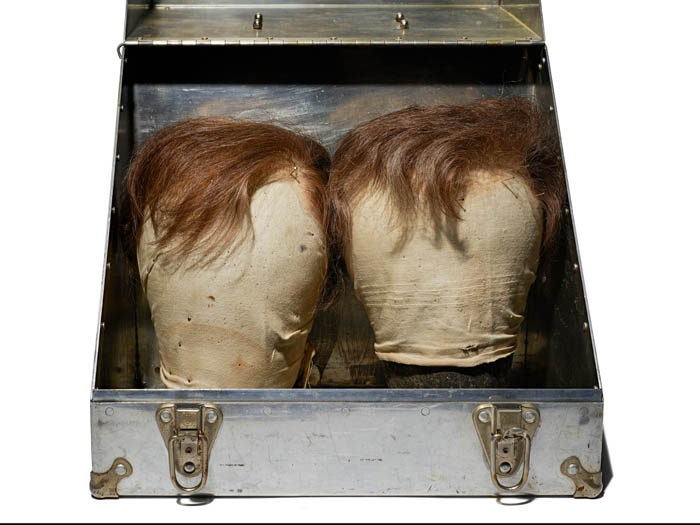 Two brown hairpieces on a body, in a steel case