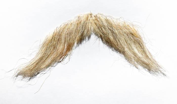 A blonde mustache