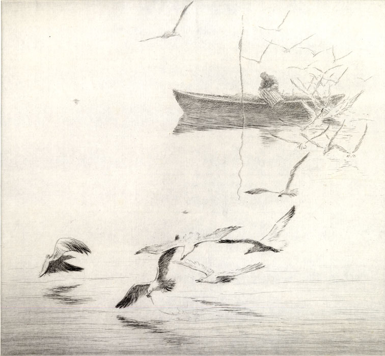 A man in a boat with birds.