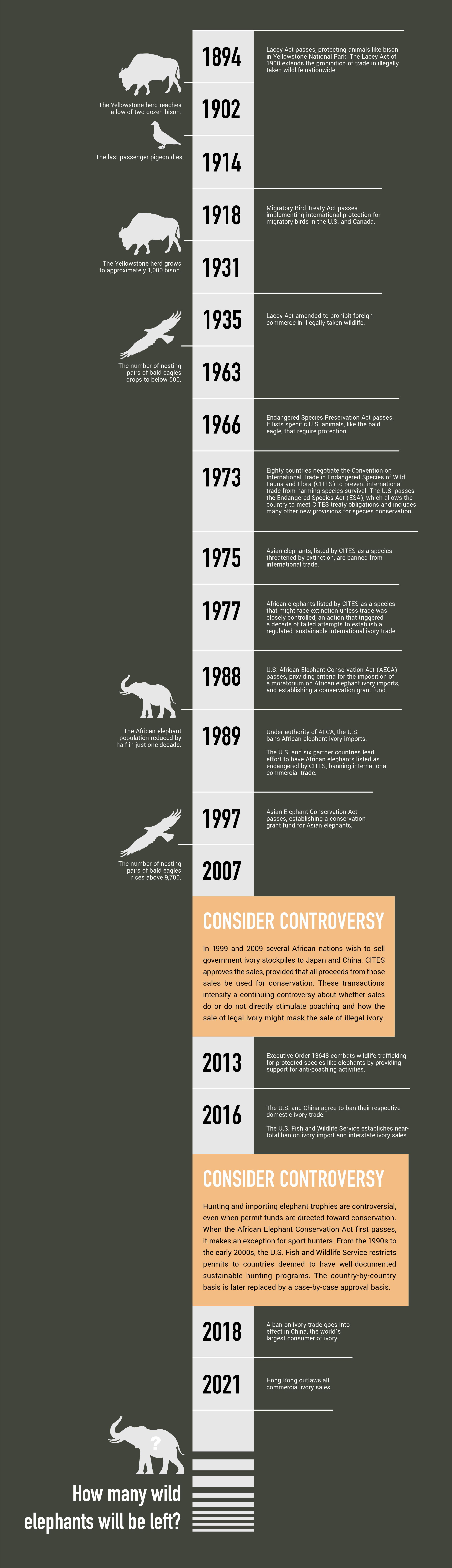 Elephant conservation timeline
