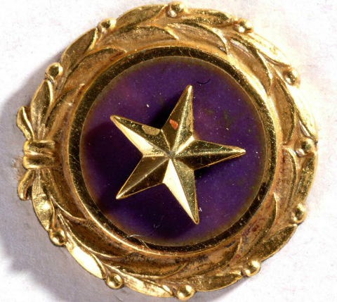 Gold pin with purple center and gold star.