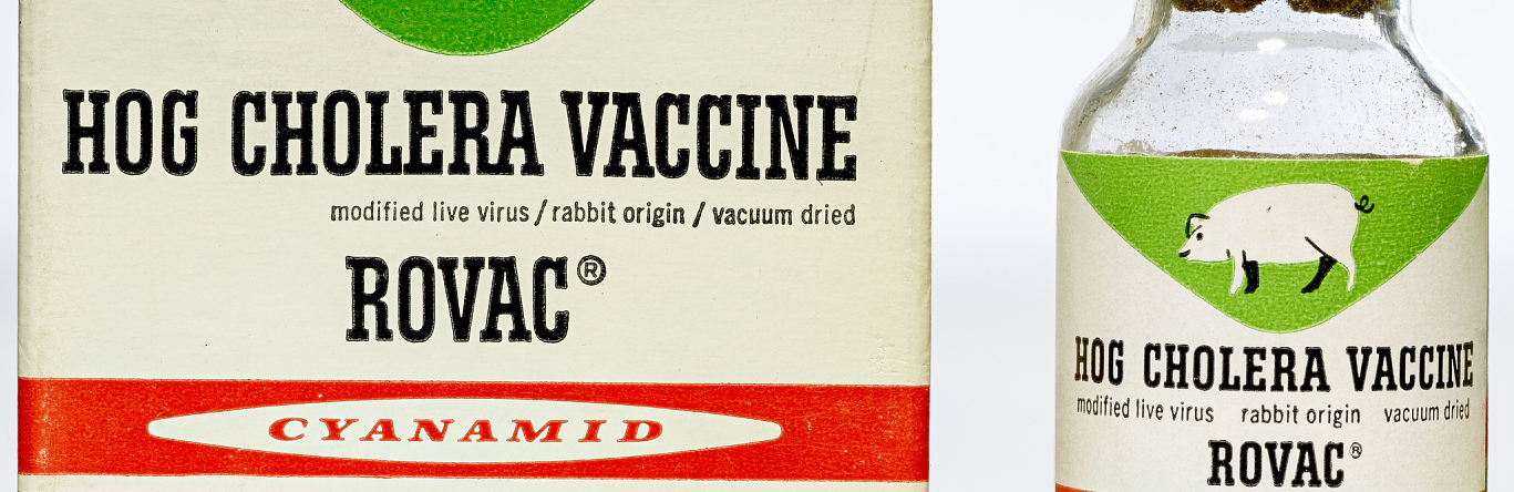 Hog Cholera Vaccine (ca 1962)