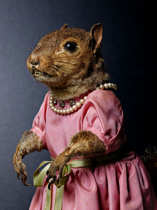 A taxidermied squirrel wearing a pink dress (with rhinestones) and pearls. His nails are very long.