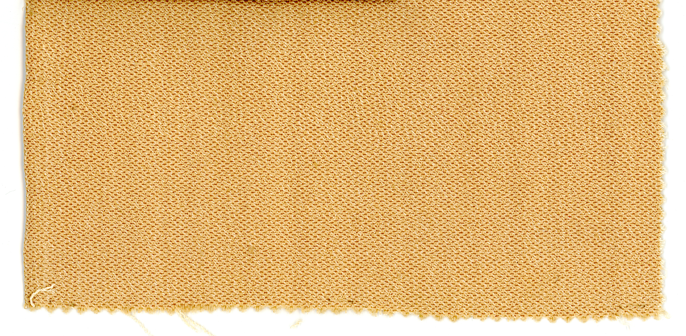 Photo of fabric, wheat color