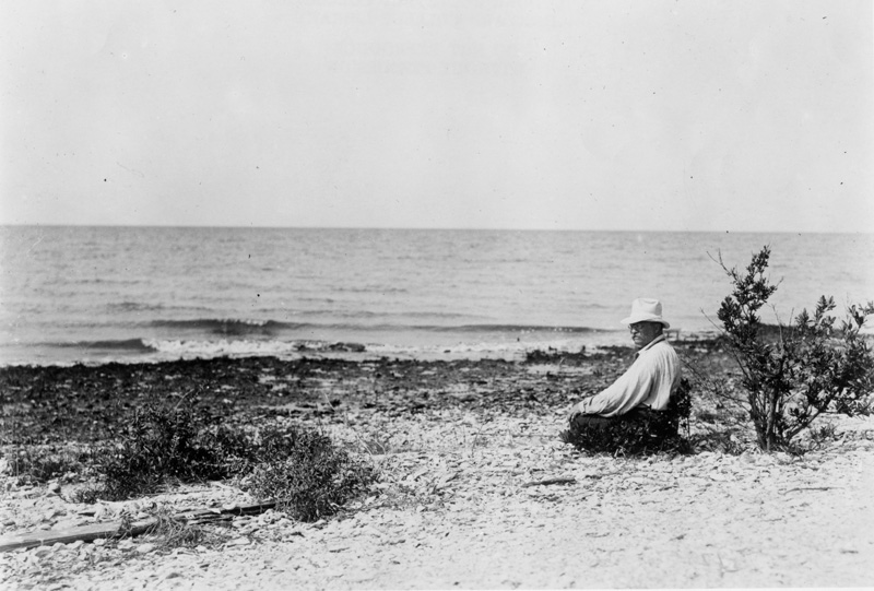 Theodore Roosevelt sitting on a beach