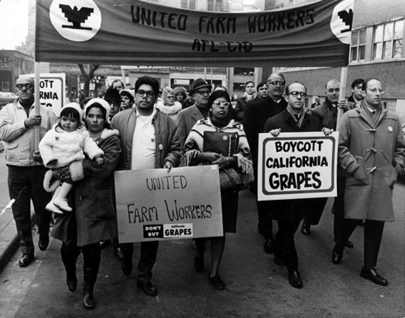 Supporters of the Grape Boycott demonstrate in Toronto, Ontario, December 1968.