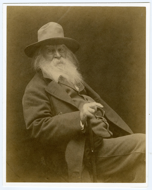 Portrait of Walt Whitman, seated