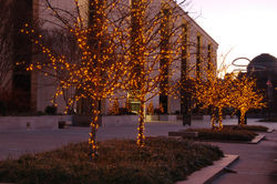 Holiday lights at the National Museum of American History
