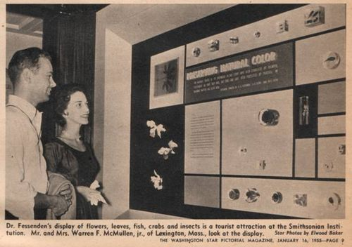 Newspaper clipping from <em>The Washington Star Pictorial Magazine</em> covering the Fessenden exhibit.