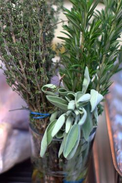 Bundle of Thanksgiving herbs. Photo by flickr user Cromley used via the creative commons license.
