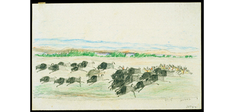 Image of a buffalo chase drawn by Wohaw, Beef, Wolf Robe or Gu hau de (Kiowa), drawn between 1875 and 1878 at Fort Marion, Florida.