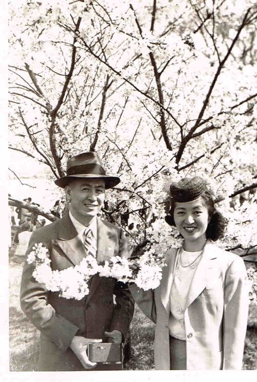 The couple in later years, at a cherry blossom festival