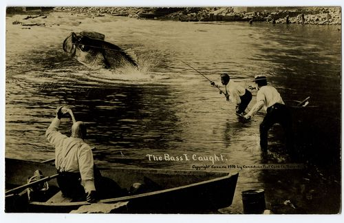 The Bass I Caught, exaggeration postcard, Canadian Postcard Co., Toronto, 1910