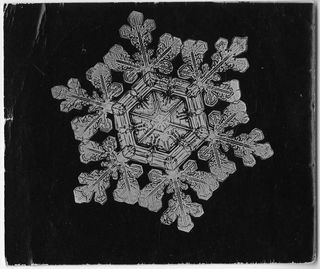 "This is one of Bentley's microphotographs of a ""Dendrite Star,"" one of the seven basic shapes of snowflakes."