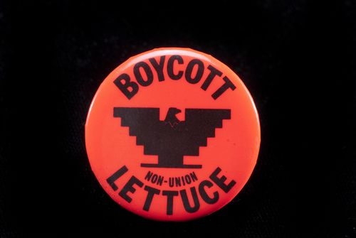 A UFW button urging a boycott of non-union lettuce