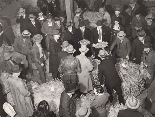 Auctioneers, buyers, and farmers during a tobacco auction sale. Durham, North Carolina, November 1939. Mario Post Wolcott. LC-USF34-52794-D. Library of Congress.