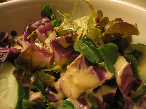 "A ""foragers salad"" featuring wood sorrel, red cabbage, cucumber and lettuce by Flickr user arimoore"