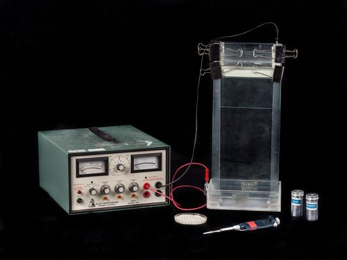 A homemade electrophoresis set-up used in the Genentech laboratory to separate out DNA fragments by length