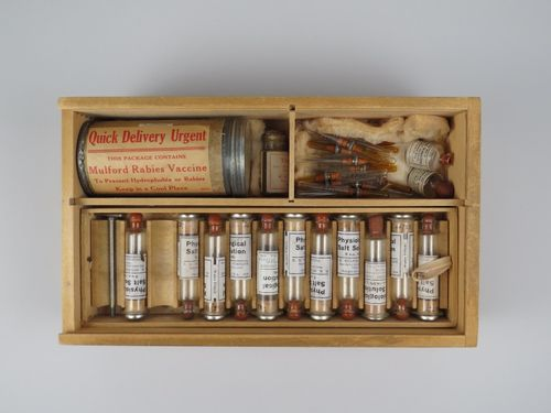 The inside of the rabies vaccine outfit from above (see photographs below for full description of the contents)