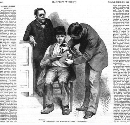 Pasteur looks on as an early version of the rabies vaccine is administered in 1885. Image from Harper's Weekly 29:1513 (December 19, 1885).