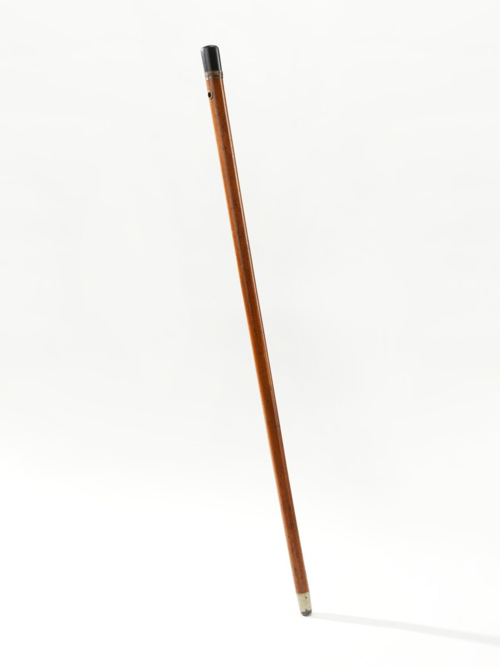 "Middling and upper middling men around 1800 often used walking sticks to maintain balance, express style or authority, and keep stray dogs at bay. The material of this modest example, like Priestley himself, traveled the globe before landing in Northumberland, Pennsylvania. The handle is ebony, a strong yet inexpensive wood from Asia or Africa that provided a smooth and polished finish. The shaft is made from the stem of a rattan palm from East Asia—the word ""Malacca"" referring to the Malay Peninsula. The ferrule is a form of German silver, an alloy of copper, nickel and zinc that look like a more expensive metal."