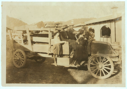 A family bringing in their exhibitions (pig, sheep, poultry) to the annual 4-H Fair at Charleston, West Virginia. Photo by Lewis W. Hine. Library of Congress Prints and Photographs Division. LC-DIG-nclc-04390.
