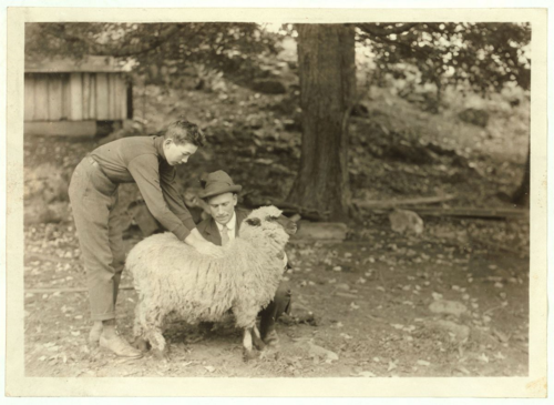 A 4H Club member examines a sheep with a Farm Bureau Agent in Pocahontas County, West Virginia. Photo by Lewis Hine. Image courtesy Library of Congress Prints and Photographs Division, National Child Labor Committee Collection.
