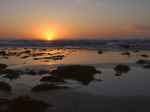 A Gulf of Mexico sunrise by Flickr user Terry Ross, via the Creative Commons