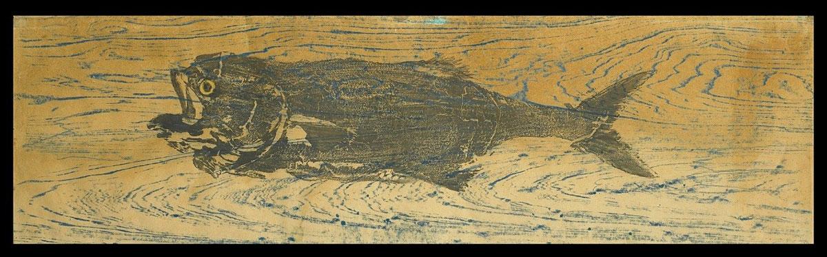 Bluefish print from Julia Child's kitchen