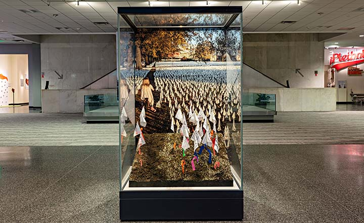 Display case with memorial flags