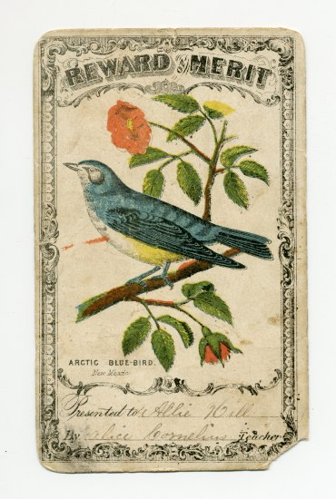 Rectangular document with illustration of a blue bird on a branch with red flowers.