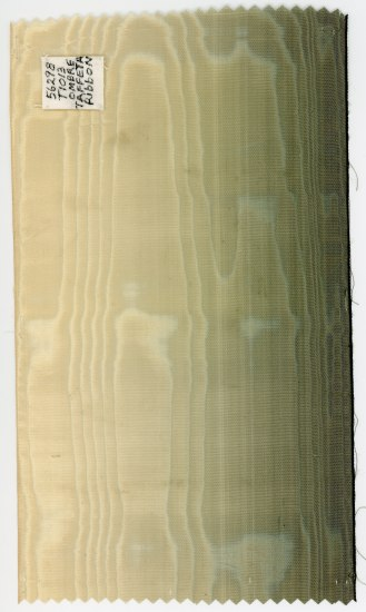 Ribbon with two shaded vertical stripes that merge into each other in an ombre, hazy way. Light white/tan to green.