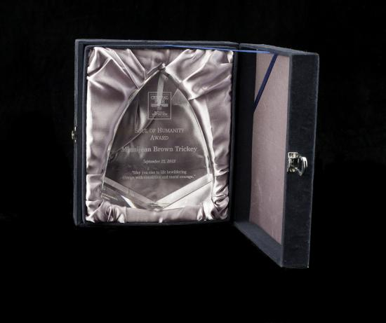 Photo of case for award. Lavender fabric with space for award to be placed.