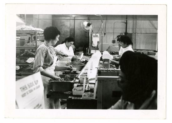 Kubla Khan employees preparing meals in woks