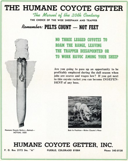 Ad in black and green for Humane Coyote Getter. Image of coyote sniffing product. Image of product, a spike-looking thing with wings.