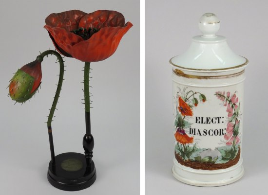 Left: Model of red flower with large petals and small black beads inside. Green stems with spikes. Right: White jar with lid and poppy illustration.