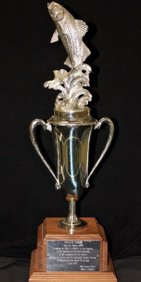 A standared trophy with a  golden fish leaping out of the top, creating splashes of water after it.
