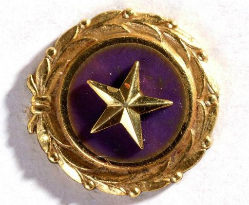Purple circular pin with gold star in center and gold laurels/foliage around the edge.