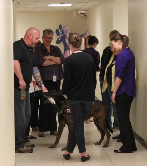 Dog in hallway with people gathered around