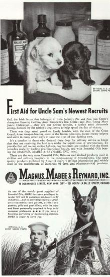 "Advertisement with text ""First aid for Uncle Sam's newest recruits"" with photo of two small puppies (one black, one white) and picture of Coast Guard official with a German Shepherd"