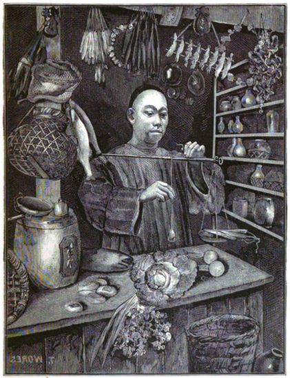 An illustration made up of visible lines and hatchwork. It is shades of black, grey, and white. A man stands behind a counter holding a stick-like instrument with scales under it. There are baskets, supplies, and plants throughout the room, and a bookshelf with jars on it.