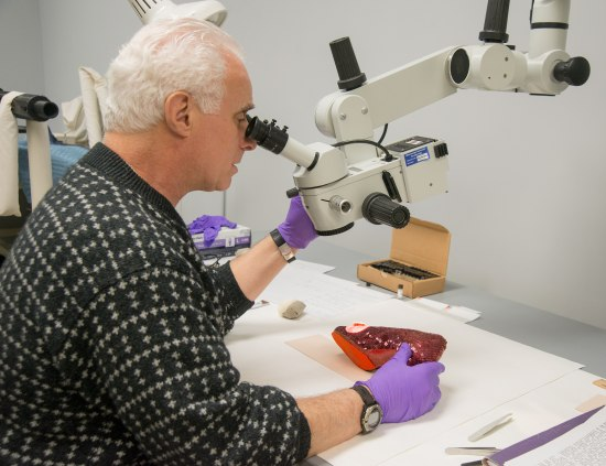 A man in a black and white sweater peers into a microscope. He wears purple gloves. In his right hand, he holds one of the Dorothy's Ruby Slippers gently by the heel.