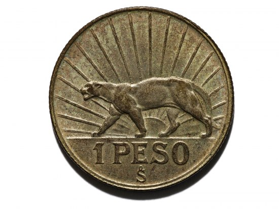 A coin that is golden in color with a large cat prowling on one side. There is a sun we can see between its legs and there are lines from it radiating across the coin to the edges.